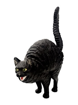 Picture of Hissing Cat